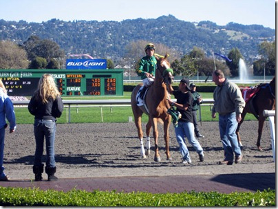 horsewinner2
