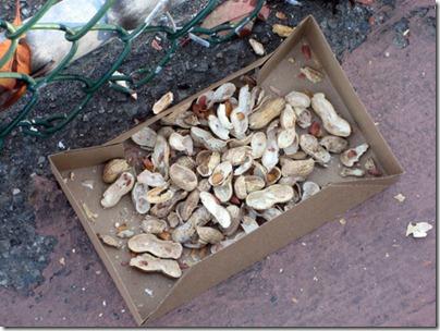 peanutshells